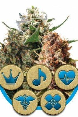 Medical Mix (Royal Queen Seeds)