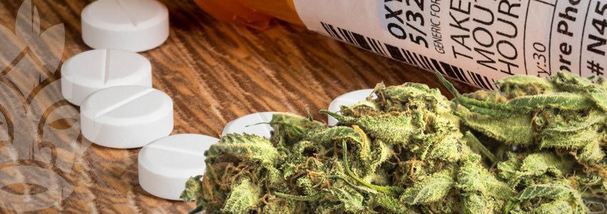 Marijuana and pharmaceuticals