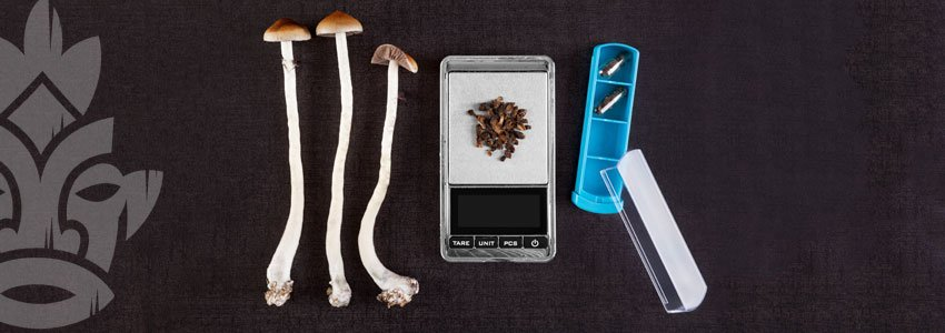 Micro-dosing magic mushrooms