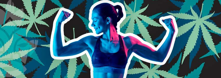 Cannabis Muscle Growth