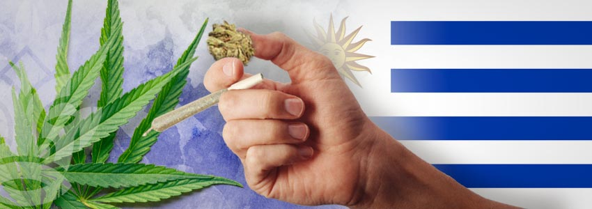 Weed-Friendly Countries: Uruguay