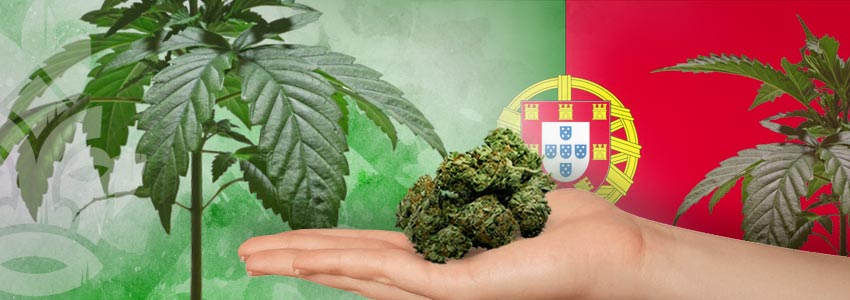 Weed-Friendly Countries: Portugal