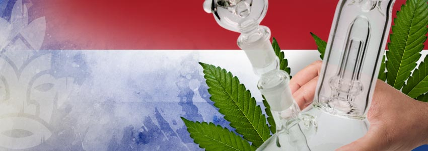 Weed-Friendly Countries: Netherlands