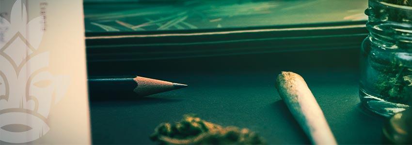 Cannabis Smoker's Checklist: Do Your Research
