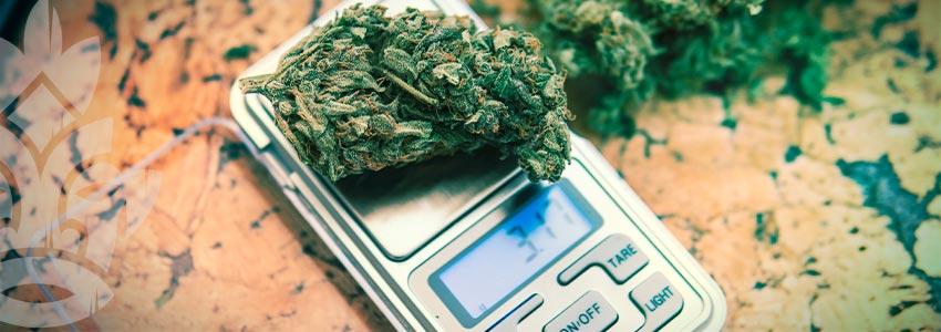 Cannabis Smoker's Checklist: Dosage