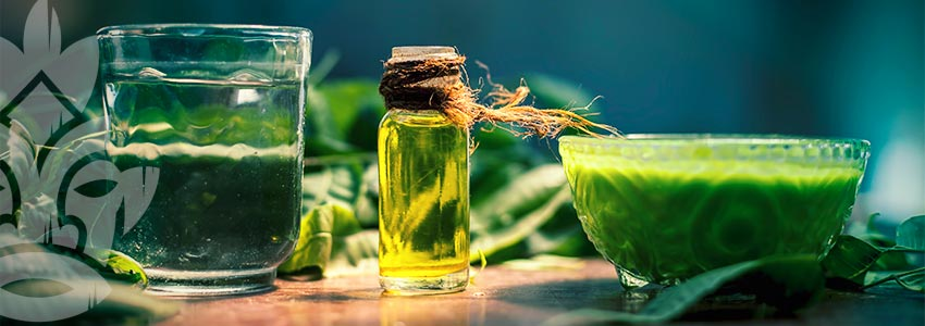 WHAT IS NEEM OIL USED FOR?