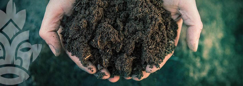 Soil Porosity: Knowledge Is Power
