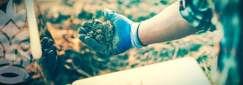 What Makes Soil Porous?