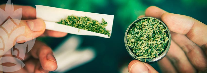 Benefits of a Cannabis Grinder