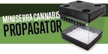 Miniserra Cannabis Propagator
