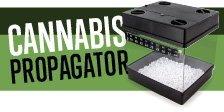 Cannabis Propagator