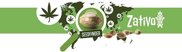 Cannabis Seedfinder