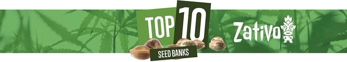 Top 10 Cannabis Seed Banks