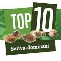 Top 10 Sativa-dominant