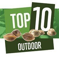 Top 10 Outdoor