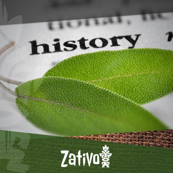 The History Of Salvia - Zativo