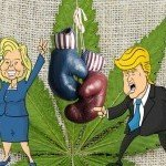 US Presidential Elections: 7 Candidates and Their Views on Cannabis