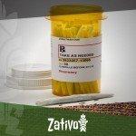 A Look at Cannabis as a Painkiller
