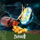 Monoamine Oxidase Inhibitors (MAOIs) - Warning