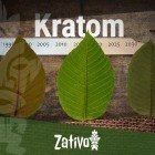 The History Of Kratom