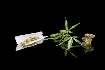Video Tutorial: How To Make A Cannabis Thai Stick