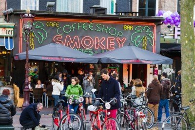 Coffeeshops in the Netherlands Sell Weed Worth 1 Billion Euro a Year