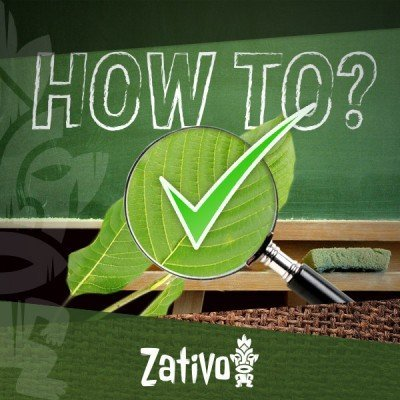 How To Keep Your Kratom Good