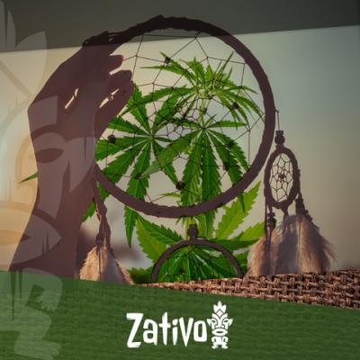 How Does Cannabis Affect Your Sleep?
