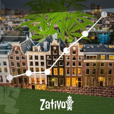 The Rise Of The Coffeeshops In Amsterdam