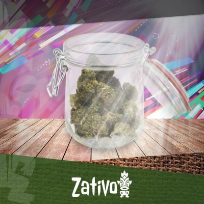 What Is The Best Way To Store Your Weed?